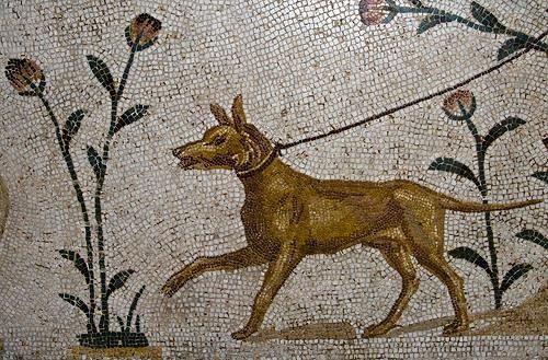 El perro de Alcibíades, una cortina de humo muy clásica